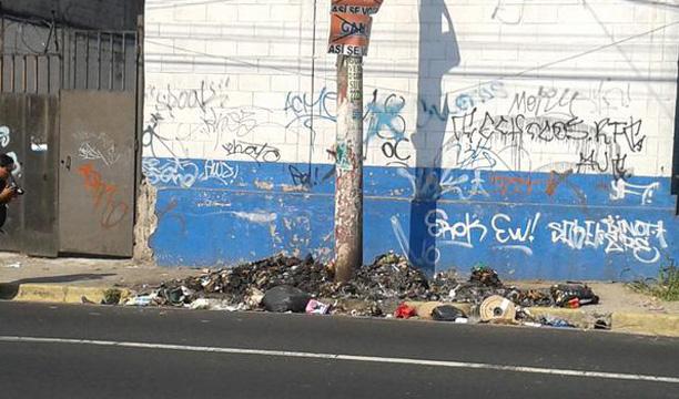 Foto: Xenia González/DEM.