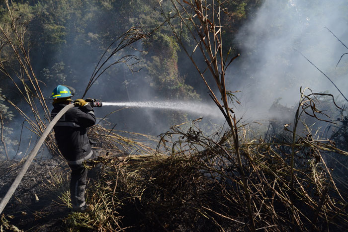 Debido al aumento de vientos, las autoridades pidieron a la población no realizar quemas. /DEM