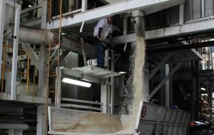 Esperan recuperación en exportaciones de azúcar. /DEM