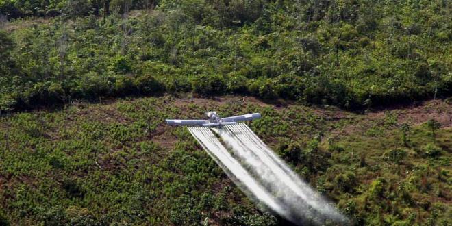 Avioneta de la Policía fumiga cultivos de coca en Colombia.EFE