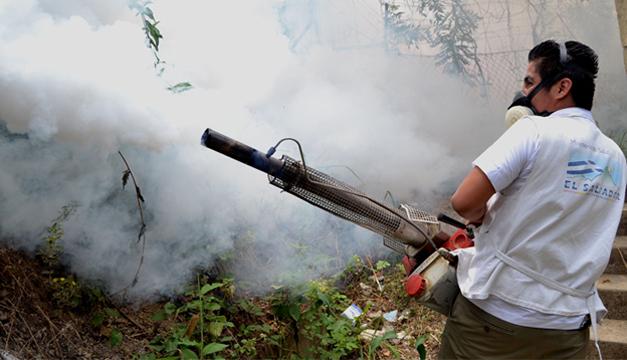 El año pasado la epidemia de dengue y chikunguña alcanzó un nivel alarmante. /DEM
