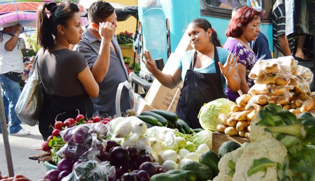 En el último año, el precio de los alimentos ha subido 4.17%. /DEM