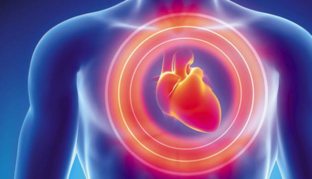 corazón 327-360