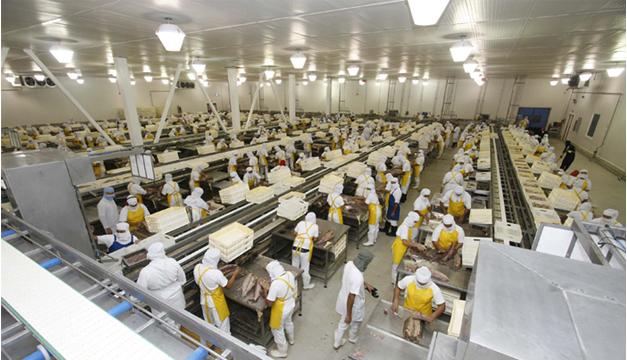 Foto de referencia. Parte de la producción de Costa Rica.