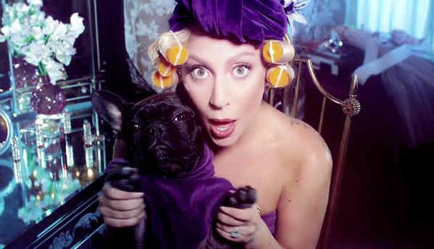 Una de las fotografías del anuncio donde se muestra a Gaga con una perrita.