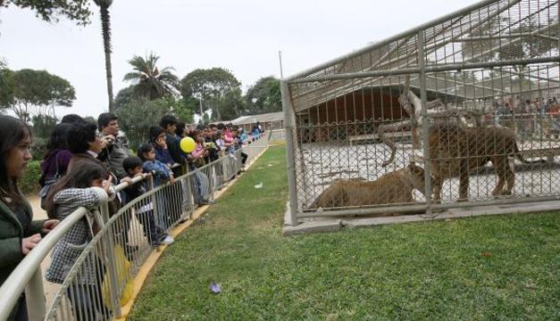 Parte de las instalaciones del zoológico. Tomada de internet.