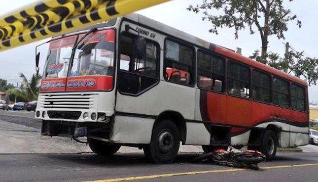 bus-26