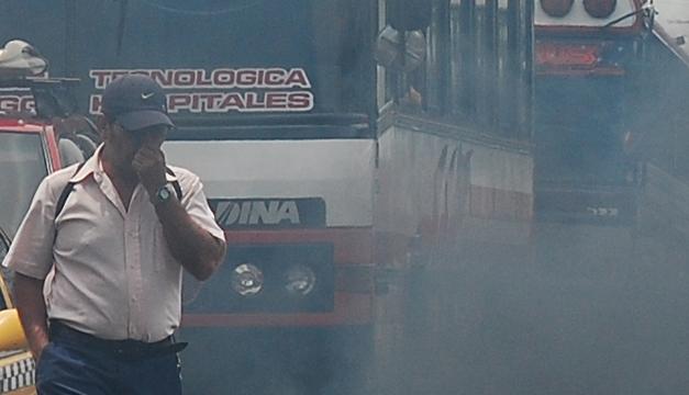 buses-humo