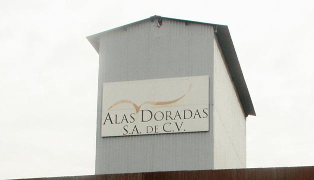 ALAS-DORADAS