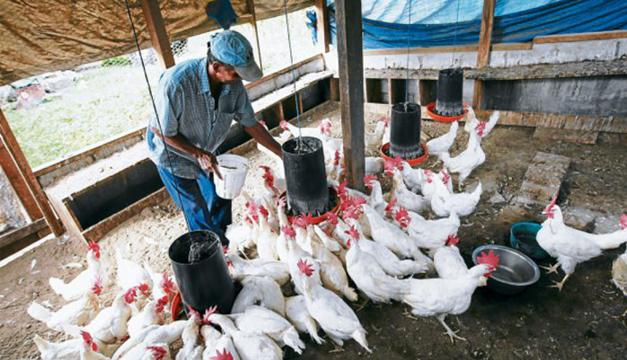 Cortesía: El Heraldo, Honduras.