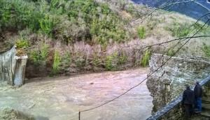 Puente-de-plaka-actual