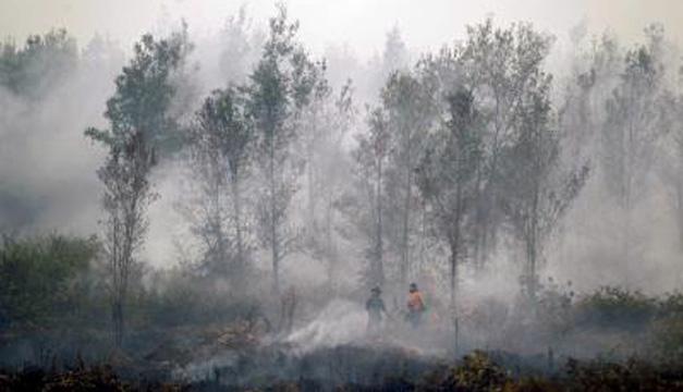Uno de los incendios de Indonesia. Foto/EFE