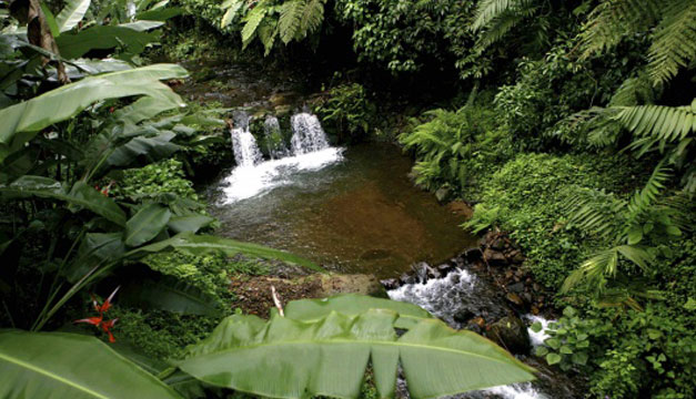 Guatemala-recursos-naturales