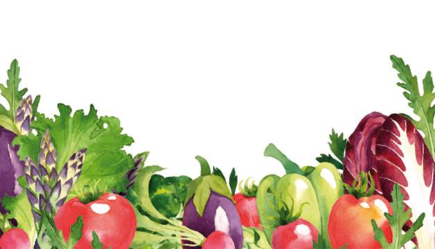 canasta-basica-vegetales
