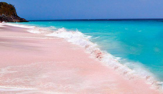 isla-rosa