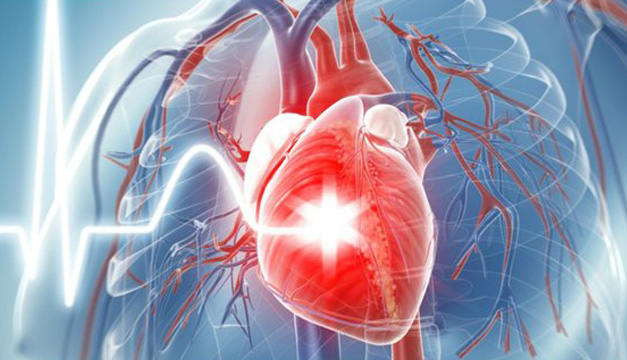 Enfermedades cardiovasculaes-Agencia