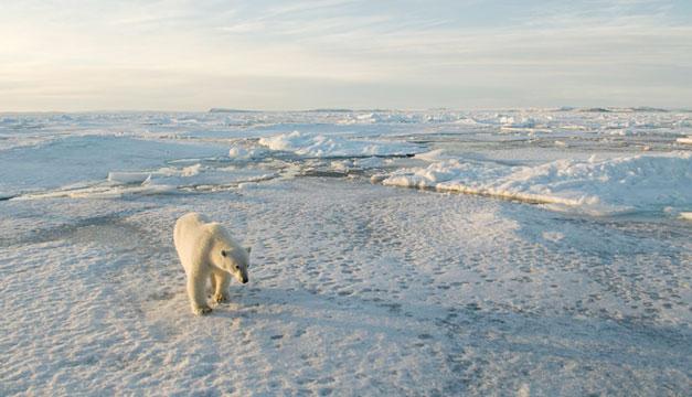 Deshielo-en-el-Artico