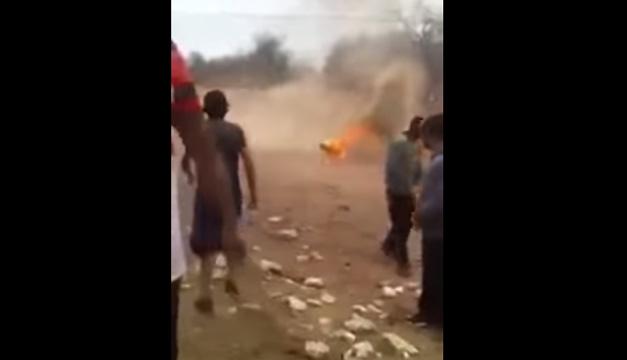 perrito quemado