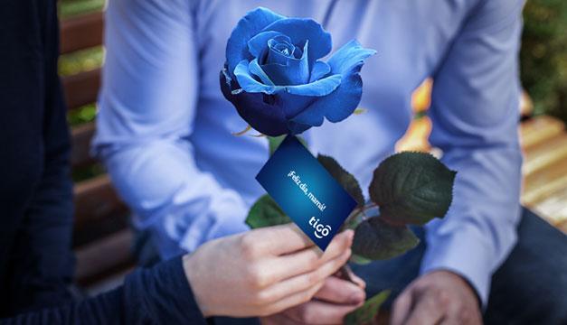 Rosas-azules-de-Tigo