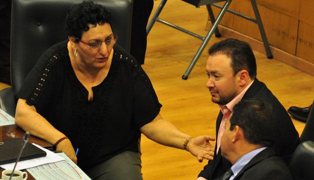 junta-directiva-gallegos-pena