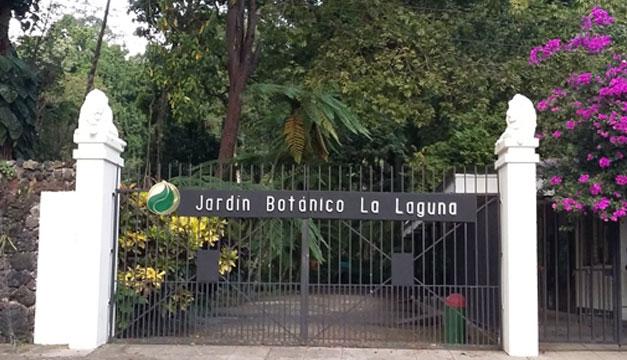 Jardin-Botanico-La-Laguna