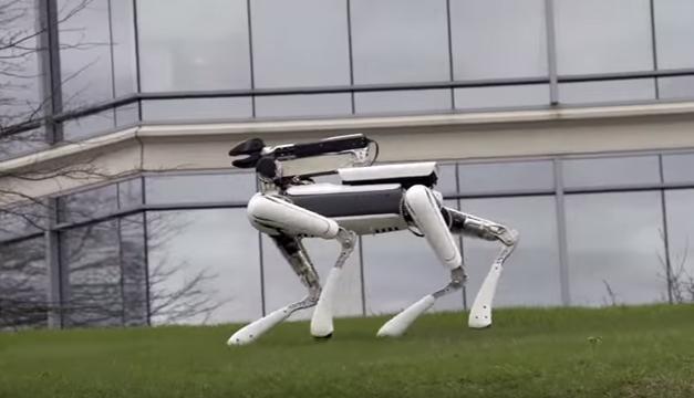 Perro-robot