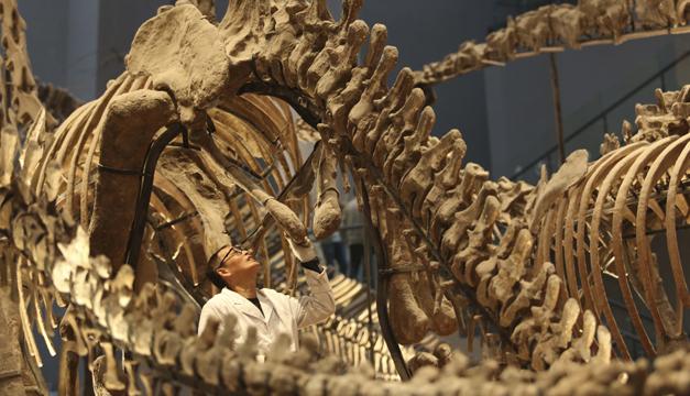 dinosaurio-xinhua