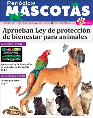 featured-mascotas