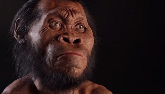 antepasado-humano