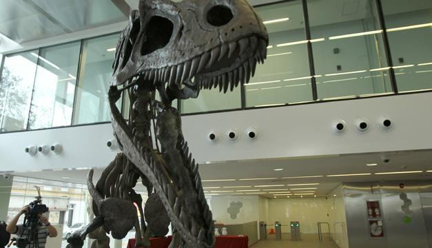 dinosaurio argentina-efe