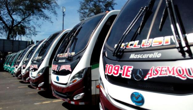 nuevos buses