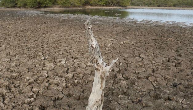 rio-sequia-paraguay