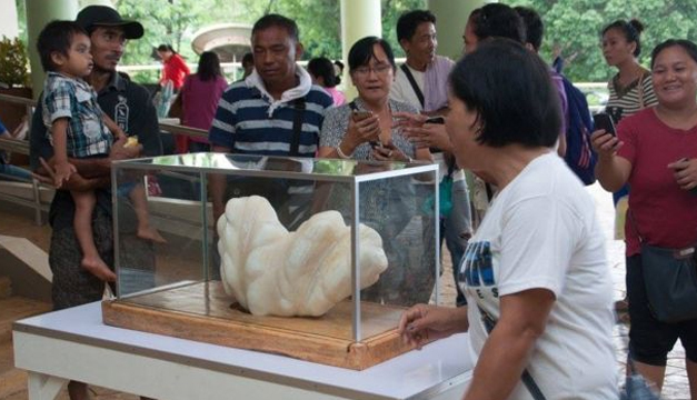 Tomada de: Gobierno de Puerto Princesa.