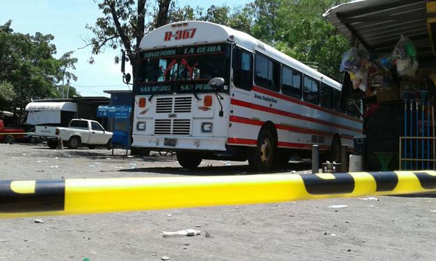 bus-367