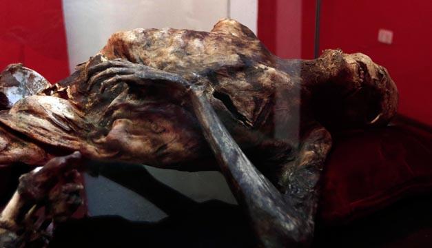 momia-efe