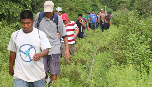 salvadoreños