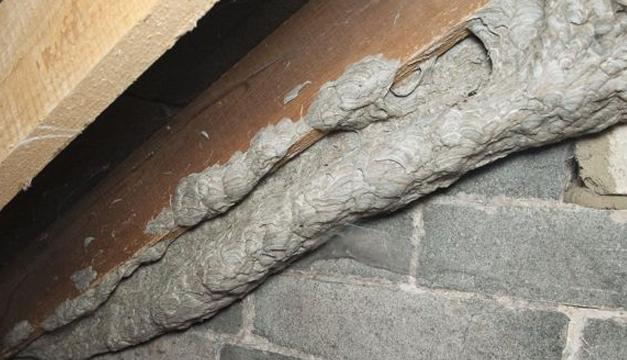 nido-de-abeja-tunel