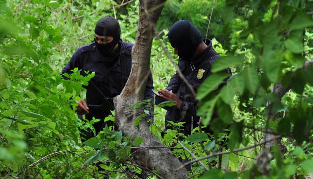 campamento-escondite-pandillas