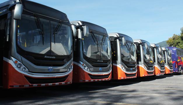 buses-nuevos
