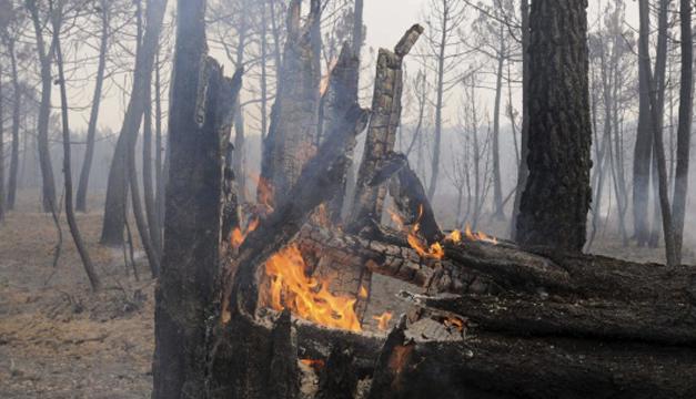 madera-quemada-efe