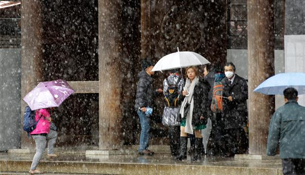 tokio-nevada