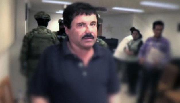 El Chapo usaba tiburones para traficar cocaína