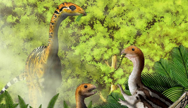Limusaurus-dinosaurio2.jpg