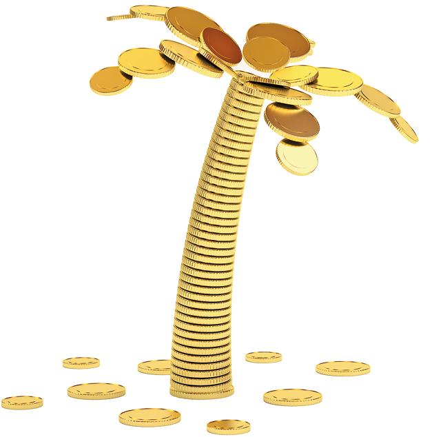 palmera-de-dinero-2