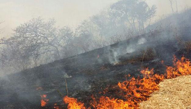Aumentan incendios forestales en El Salvador