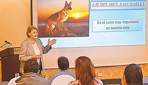 Suggest not to use collars in German shepherds - El Mundo Newspaper (press Release) (Registration) (blog) 1