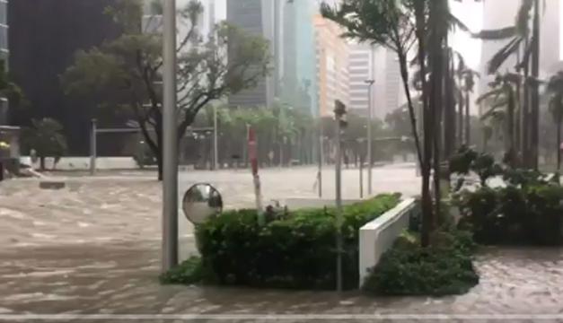Saquean tiendas en Miami en medio del huracán Irma