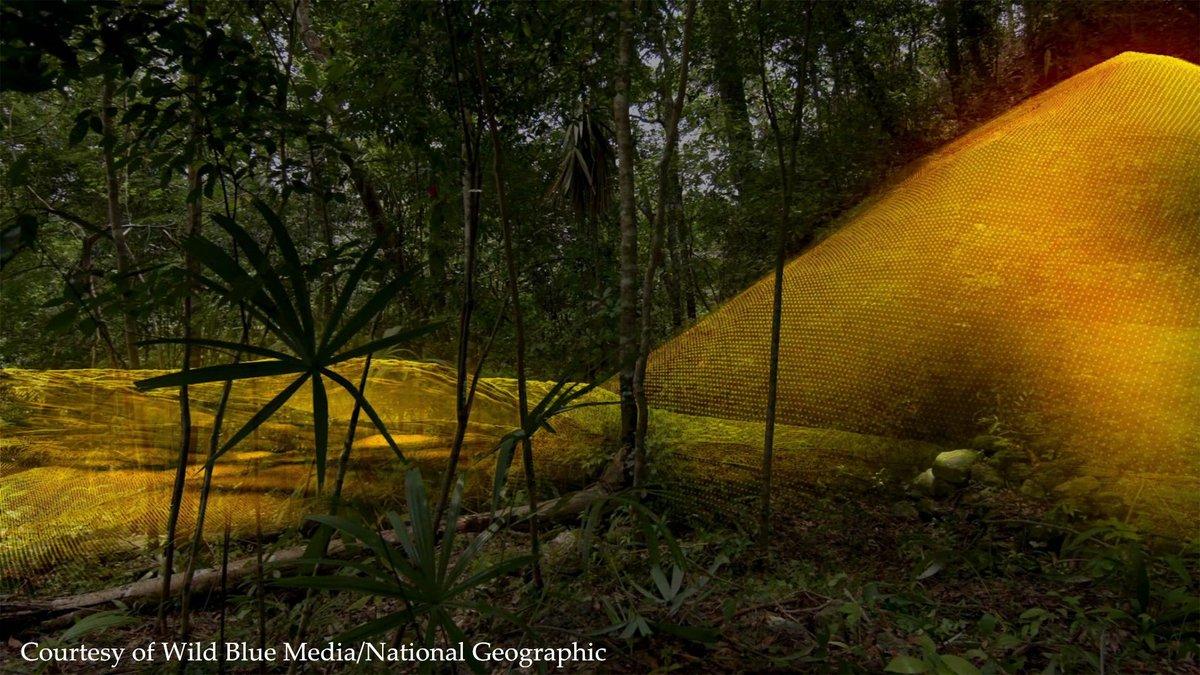 As encontraron nuevas estructuras mayas ocultas en for Muralla entre mexico y guatemala