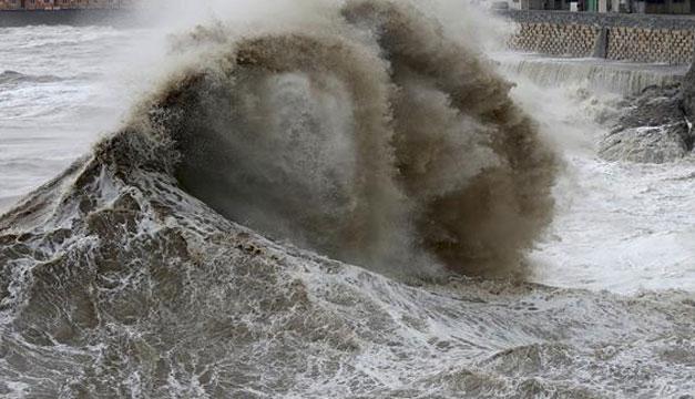 Pánico por falsa alerta de tsunami (+Tuits) — Florida