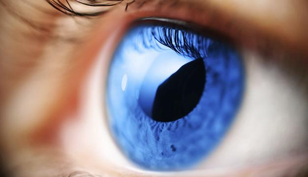 Image result for ceguera en el mundo